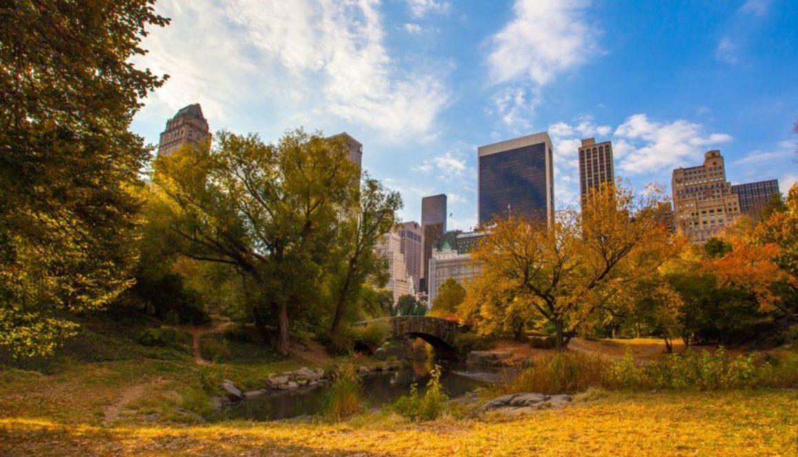 Passives Einkommen durch das Investieren in amerikanische Immobilien